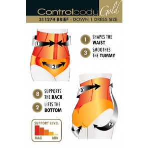 Control Body Gold Corset Brief - Firm Support